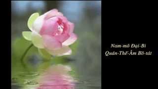 Niệm Nam Mô Quan Thế Âm Bồ Tát (108 lần)
