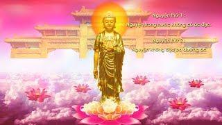 48 Đại Nguyện Của Phật A Di Đà (Mới, Có Chữ, Bản Việt Văn)