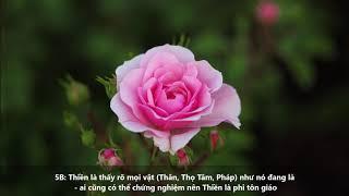 Thiền là thấy rõ mọi vật (Thân, Thọ Tâm, Pháp) như nó đang là - Thiền là phi tôn giáo - HT Viên Minh