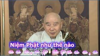 Niệm Phật Như Thế Nào (Có Phụ Đề)