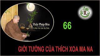 Từng Giọt Sữa Thơm 66 - Thầy Thích Pháp Hòa (Tv Trúc Lâm, Ngày 29.9.2020)