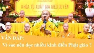 Vấn đáp: Vì sao nên đọc nhiều kinh điển Phật giáo ? | Thích Nhật Từ