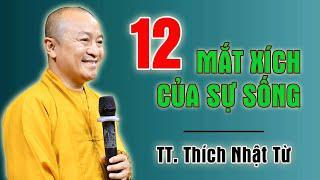12 MẮT XÍCH CỦA SỰ SỐNG MÀ AI CŨNG NÊN BIẾT - TT. Thích Nhật Từ thuyết giảng rất sâu sắc