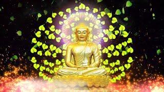"""""""Kinh Sugàrava Sutta"""" - ĐĐ. Thích Phước Toàn giảng ngày 06-05-2021"""