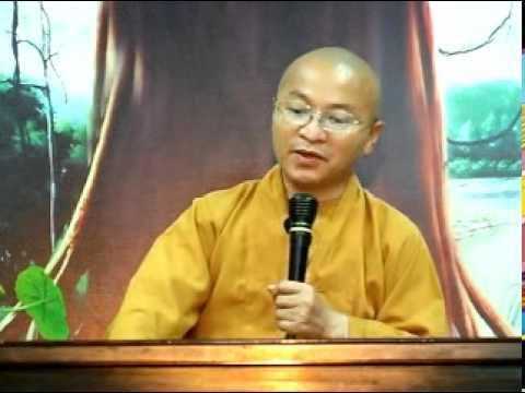 Kinh Pháp Cú 22: Quả báo của ác hạnh và tà kiến (01/05/2011) video do Thích Nhật Từ giảng