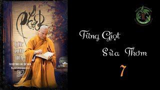 Từng Giọt Sữa Thơm 7- Thầy Thích Pháp Hòa (Tv Trúc Lâm, Ngày 22.4.2020)