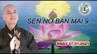 Sen Nở Ban Mai 9 -Thầy Thích Pháp Hòa (Tv.Trúc Lâm.Ngày 7.1.2021)