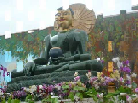 Nhạc Khai Thị Niệm Phật (Rất Hay)