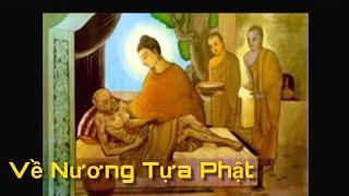 Nương tựa Phật - Diệu Hiền, Dzoãn Minh