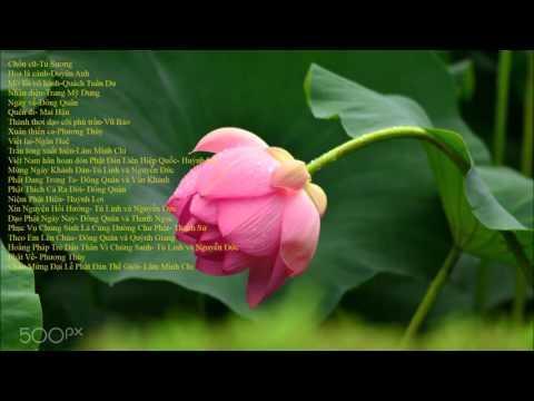 Những bài hát tân nhạc Phật giáo chọn lọc - Vol 2