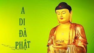 Hỏi Đáp 18 : Vì sao phải niệm A Di Đà Phật