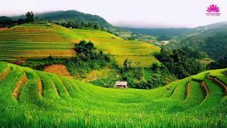 Quê Hương Nhiệm Mầu