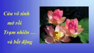 VỮNG CHÃI THẢNH THƠI - Nhạc Võ Tá Hân - Thơ Thích Nhất Hạnh