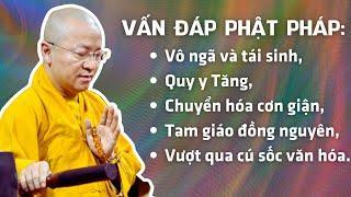 Vấn đáp Phật pháp: Vô ngã và tái sinh, quy y Tăng, Chuyển hóa cơn giận, Tam giáo đồng nguyên,...