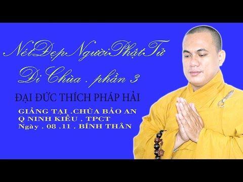 Nét Đẹp Người Phật Tử Đi Chùa ( Phần 3) - Thích Pháp Hải