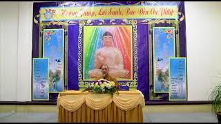 Tâm tịnh tức Phật độ tịnh - Thầy Trí Chơn giảng tại Hoa Kỳ