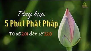 """Tổng Hợp """"5 Phút Phật Pháp"""" (Từ số 201 đến 220)"""