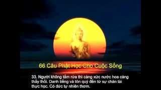 Diễn Đọc 66 Câu Phật Học Cho Cuộc Sống (Có Phụ Đề, Rất Hay)