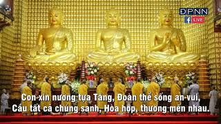 Tụng Kinh Phật Căn Bản trong Khóa tu Tuổi Trẻ Hướng Phật Online