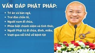 Vấn đáp Phật pháp: Tri ân và bản ngã, trai đàn chẩn tế, người nam đi chùa, phân biệt chánh niệm...