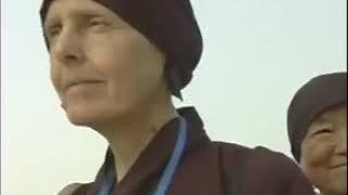 Tăng thân Làng Mai tại Vesak 2008 - Hà Nội - 1