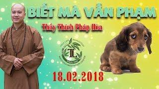 Biết Mà Vẫn Phạm - Thầy  Thích Pháp Hòa tư gia Phật tử Tuệ Quân, Feb 18, 2018