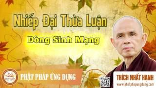 Nhiếp Đại Thừa Luận - Dòng Sinh Mạng - Thầy Thích Nhất Hạnh giảng