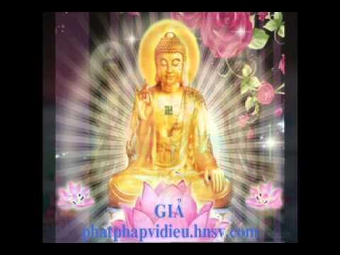 Phật Pháp Cứu Đời Tôi
