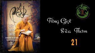Từng Giọt Sữa Thơm 21 - Thầy Thích Pháp Hòa (Tv Trúc Lâm, Ngày 2.6.2020)