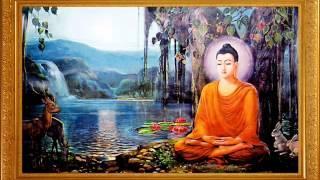Nhạc Niệm: Nam Mô Bổn Sư Thích Ca Mâu Ni Phật