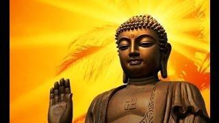 Tình Thương Đức Phật A Di Đà