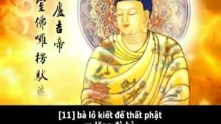 Diễn Đọc Nghi Thức Và Trì Chú Đại Bi (Âm Việt, Có Phụ Đề) (Hình Động)