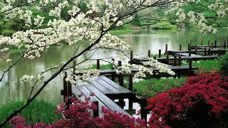 ZEN GARDEN RELAX MEDITATION / YOGA / KEVIN KENDLE/ SHIATSU /INNER PEACE/