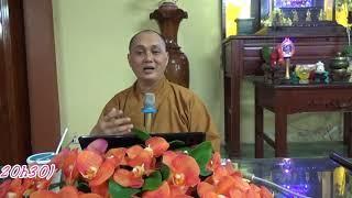 Năm thứ 8 & 9. sau khi Phật thành đạo - ĐĐ.Thích Thiện Chơn