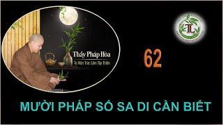 Từng Giọt Sữa Thơm 62 - Thầy Thích Pháp Hòa (Tv Trúc Lâm, Ngày 15.9.2020)