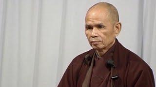 Đến Đi Thong Dong [Lâm Tế Ngữ Lục 07]   TS Thích Nhất Hạnh(30-10-2003, Xóm Thượng, Làng Mai)