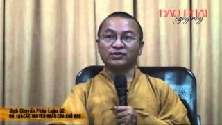 Kinh chuyển pháp luân 02: Các nguyên nhân của khổ đau (07/04/2013) video do Thích Nhật Từ giảng