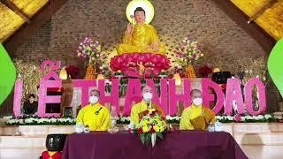 Ý nghĩa Ngày Lễ Phật Thành Đạo - Mở Ra Con Đường Bất Tử | Thầy Thích Tâm Nguyên - Tu Viện Hạnh Phúc