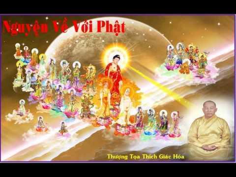 Nguyện Về Với Phật