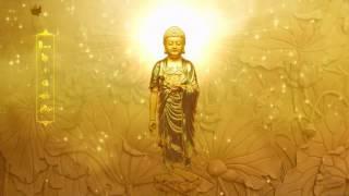 Niệm Phật 4 Chữ (A Di Đà Phật, Âm Việt) (Tịnh Tông Học Hội, Rất Hay)