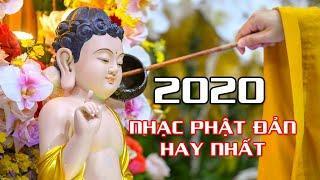 Nhạc Phật Đản Hay Nhất 2020 | Nhạc Phật Giáo Mừng Phật Đản Sanh