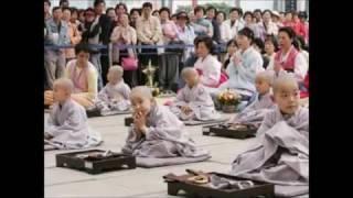 Đạo Tràng Tịnh Độ (Nhạc Phật Giáo, Rất Hay)