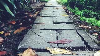 Sư Minh Niệm || Quyết Tâm Xây Dựng Đà Chánh Niệm || Bản Hoa Anh Đào || 11.11.2015