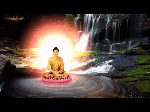 Nhạc Niệm Nam Mô Bổn Sư Thích Ca Mâu Ni Phật (Hình Động)
