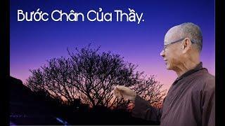 Bước Chân Của Thầy - tập 6 đến KUSHINAGA nơi Đức Phật nhập niết bàn