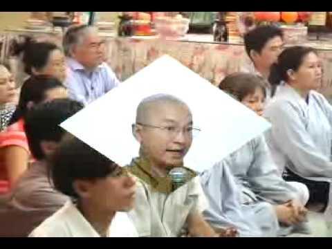 Hội nghị thượng đỉnh Phật Giáo Thế Giới (11/11/2008) video do Thích Nhật Từ giảng