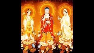 Nhạc Niệm Phật A Di Đà (Tiếng Hoa, Hình Ảnh Động Rất Đẹp) (Rất Hay)