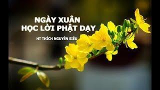 HT Thích Nguyên Siêu | Ngày Xuân Học Lời Phật Dạy