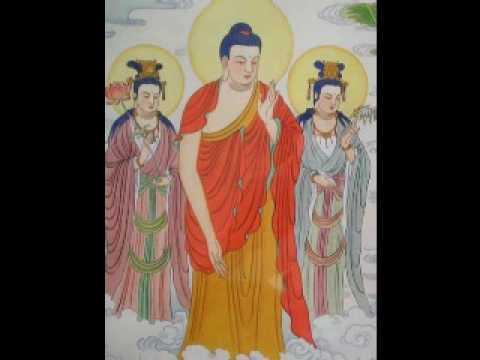 Niệm Phật Chuyển Hóa Tế Bào Ung Thư