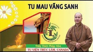 Tu Thế Nào Cho Mau Vãng Sanh (Vấn Đáp) - Thầy Thích Pháp Hòa  (11.06.2017)